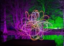 Markus Johst - F-Lichtblume